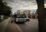 Городской автобус ($2.75 за поездку)
